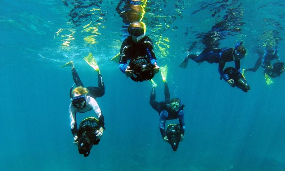 Group of people diving underwater with the help of their scooters